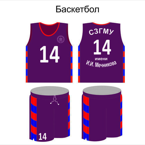 Баскетбол Мечникова