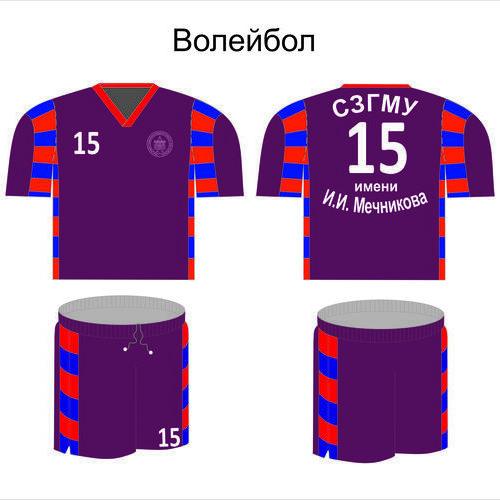 Волейбол Мечникова